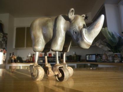 rhino-2